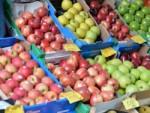 caixas-fruta-mercearia copy