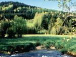 paisagem_campestre